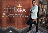 Palito Ortega 12-03-2017